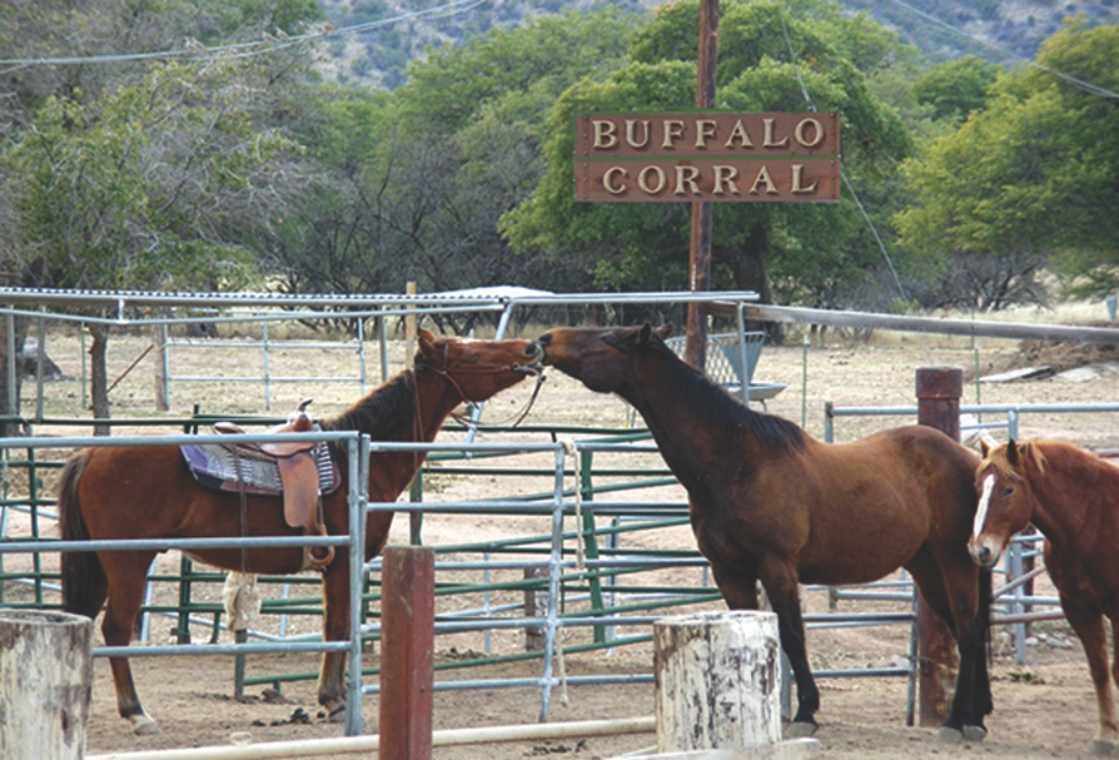 US Army MWR :: Buffalo Corral Riding Stables