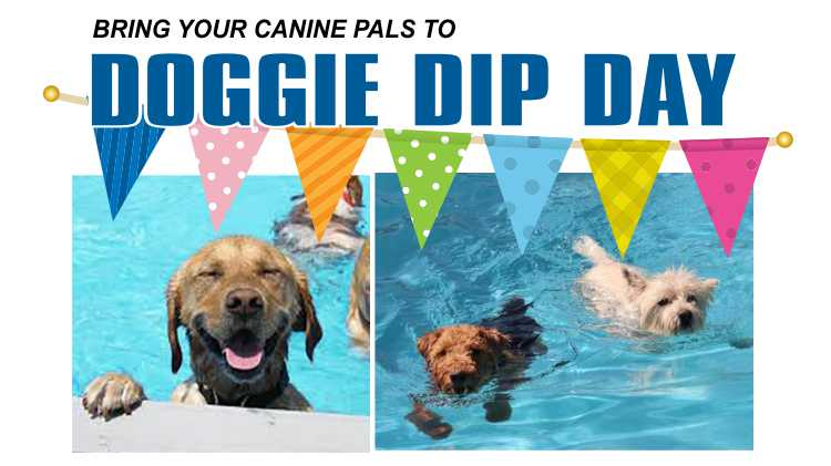Doggy Dip Day