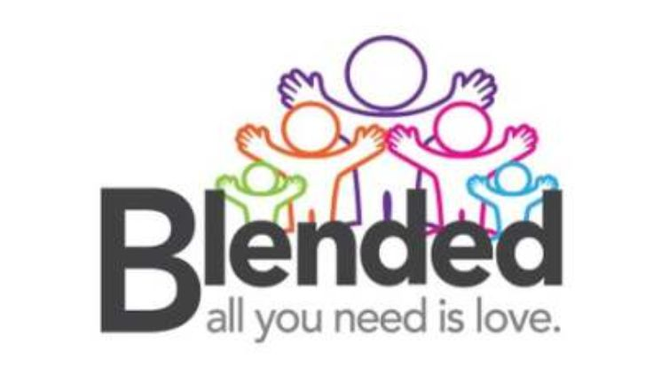 NPSP Blended Families Workshop
